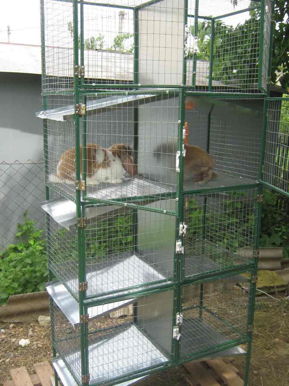 Клетки для кроликов своими руками в 3 яруса фото